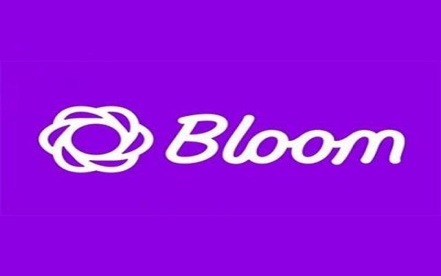 معرفی افزونه BLOOM و مزایای آن در وردپرس _ قسمت سوم
