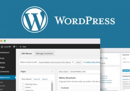 Essential WordPress plugin